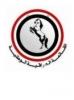 Iraqi National Movement