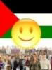 Political situation in Palestine, satisfied 19%