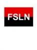 Frente Sandinista de Liberación Nacional 49%