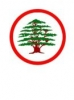 Lebanese Forces 45%
