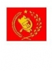 Partido Comunista Peruano 49%