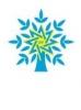 Yeni Azərbaycan Partiyası 44%