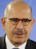Mohamed ElBaradei 48%