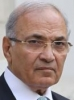 Ahmed Shafik 47%