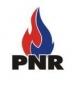 Partido Nacional Renovador