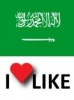 Popularity of Saudi Arabia, I like 48%