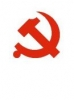 Communist Party of China (CPC) 48%