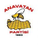 icon Anavatan Partisi