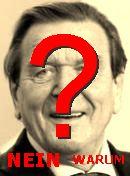 NO! Gerhard Schröder