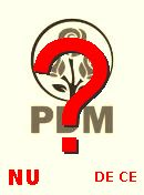  NO! PDM