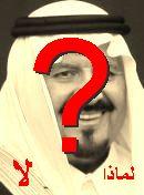 NO! سلطان بن عبد العزيز