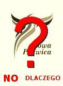 NO! Nowa Prawica
